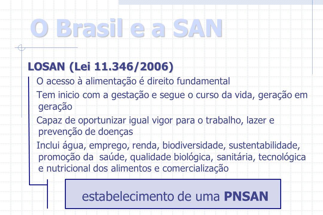 O Brasil e a SAN LOSAN (Lei 11.346/2006) O acesso à alimentação é direito fundamental Tem inicio com a gestação e segue o curso da vida, geração em ge