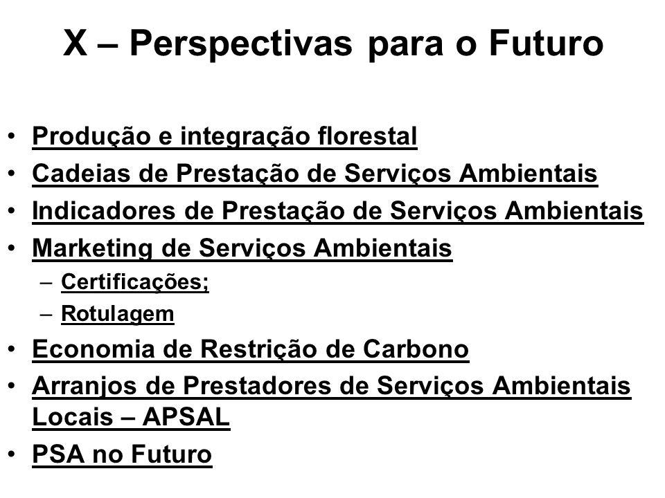 X – Perspectivas para o Futuro Produção e integração florestal Cadeias de Prestação de Serviços Ambientais Indicadores de Prestação de Serviços Ambientais Marketing de Serviços Ambientais –Certificações; –Rotulagem Economia de Restrição de Carbono Arranjos de Prestadores de Serviços Ambientais Locais – APSAL PSA no Futuro