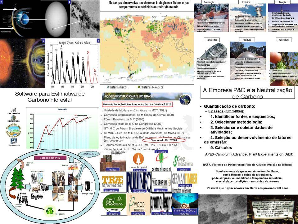 IV - Água As Plantas e a água; Distribuição de água pelo mundo; Água Verde, Água Azul, Água Virtual e Água Cinza Ciclo da água, os Ecossistemas e os serviços ambientais relacionados com a qualidade e a quantidade de água Bacias hidrográficas e Estratégias de PSA de água Os sistemas de Pagamento por Serviços Ambientais da água Estudos de Caso pelo Mundo Estudos de Caso no Brasil Produtor de água – como participar A Pegada Hídrica, Inventário Hídrico e Certificação de água