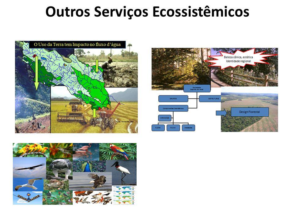 Outros Serviços Ecossistêmicos