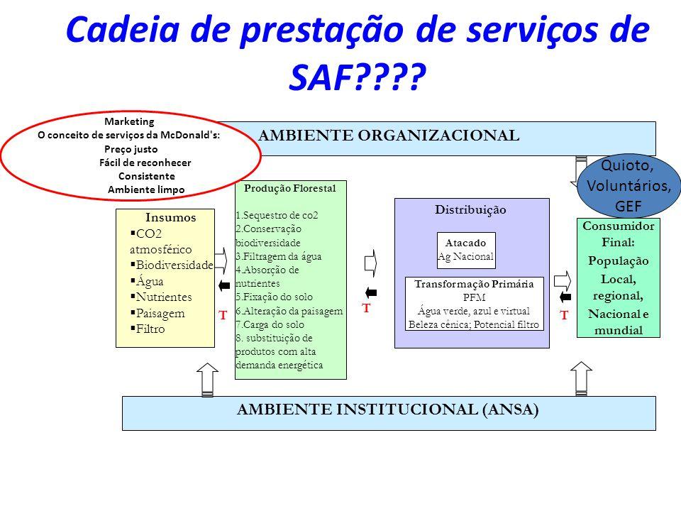 Cadeia de prestação de serviços de SAF???? T Consumidor Final: População Local, regional, Nacional e mundial Distribuição Atacado Ag Nacional Transfor