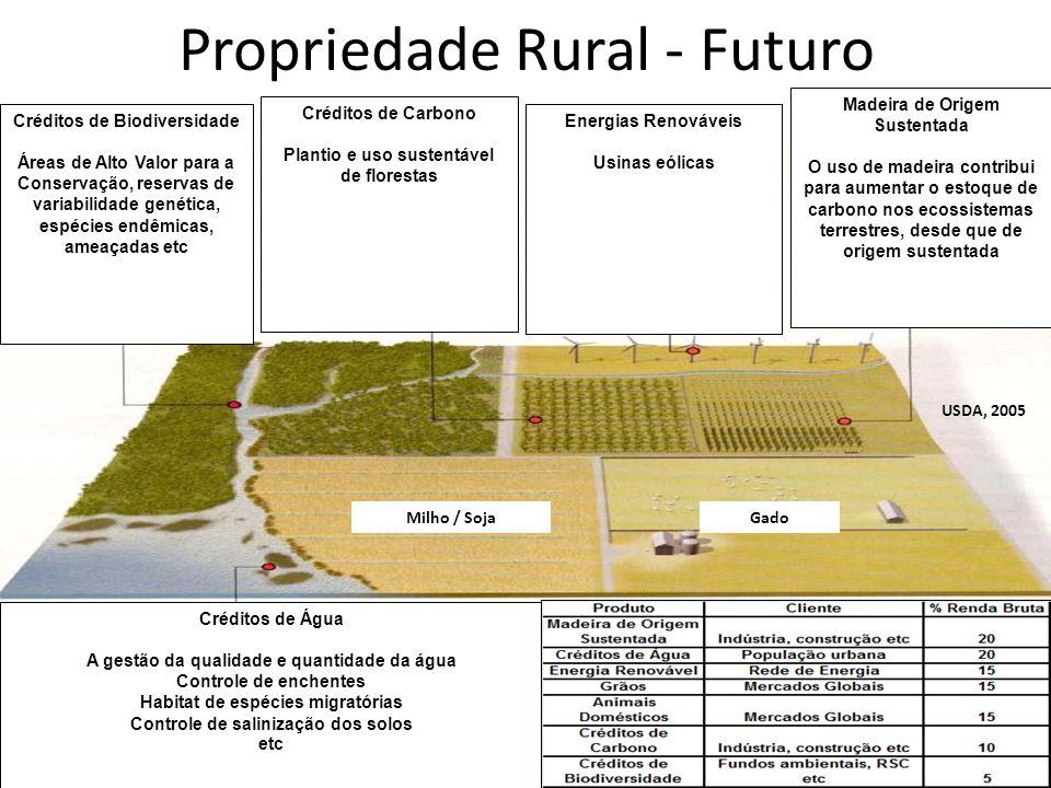 Propriedade Rural - Futuro USDA, 2005 Créditos de Biodiversidade Áreas de Alto Valor para a Conservação, reservas de variabilidade genética, espécies