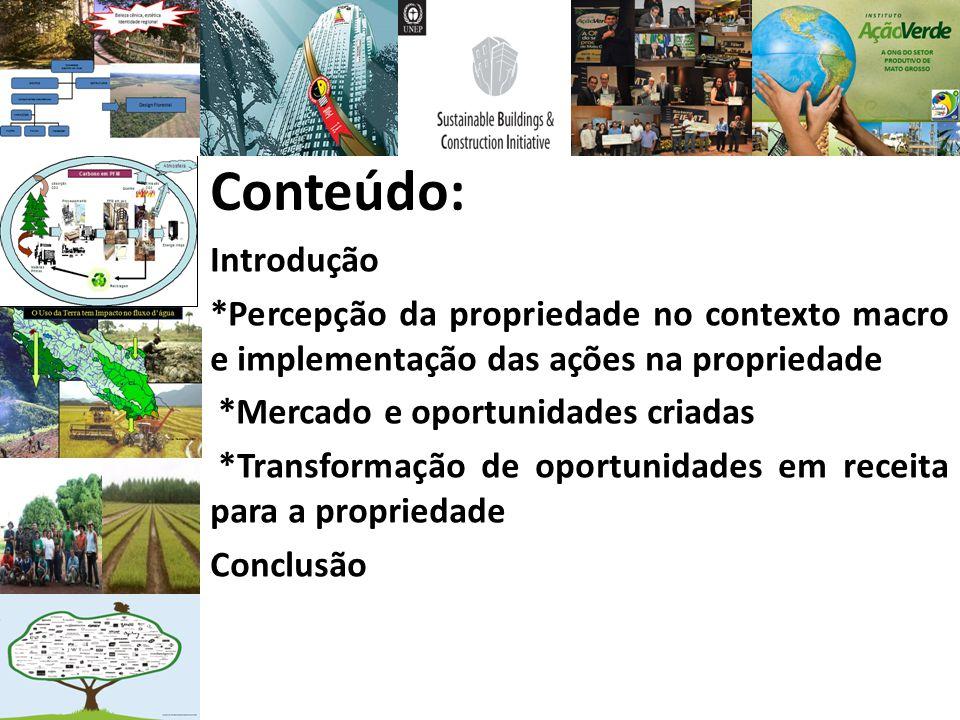 Conteúdo: Introdução *Percepção da propriedade no contexto macro e implementação das ações na propriedade *Mercado e oportunidades criadas *Transforma