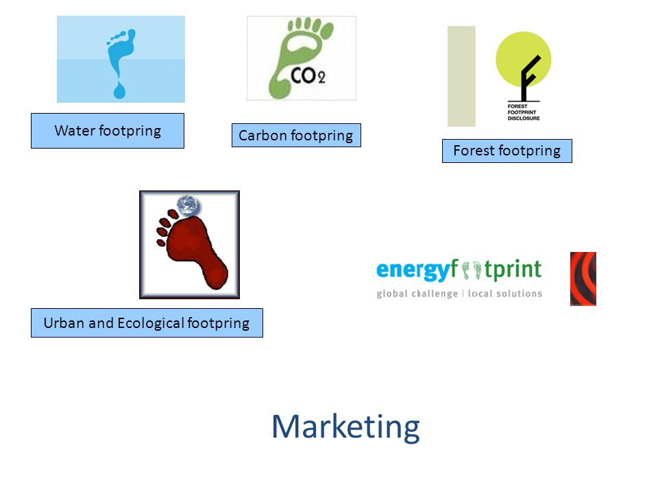 Carbon footpring Urban and Ecological footpring Water footpring Forest footpring Marketing