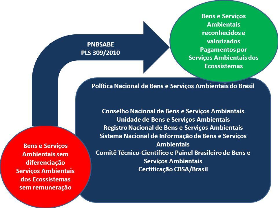 Política Nacional de Bens e Serviços Ambientais do Brasil Conselho Nacional de Bens e Serviços Ambientais Unidade de Bens e Serviços Ambientais Regist