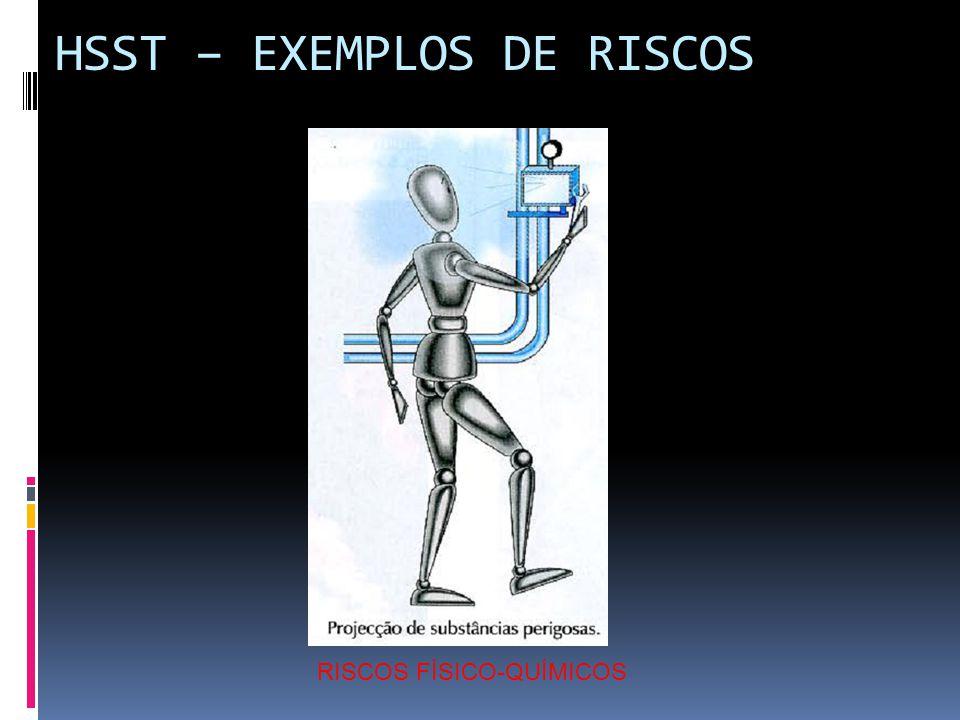 HSST – EXEMPLOS DE RISCOS RISCOS FÍSICO-QUÍMICOS