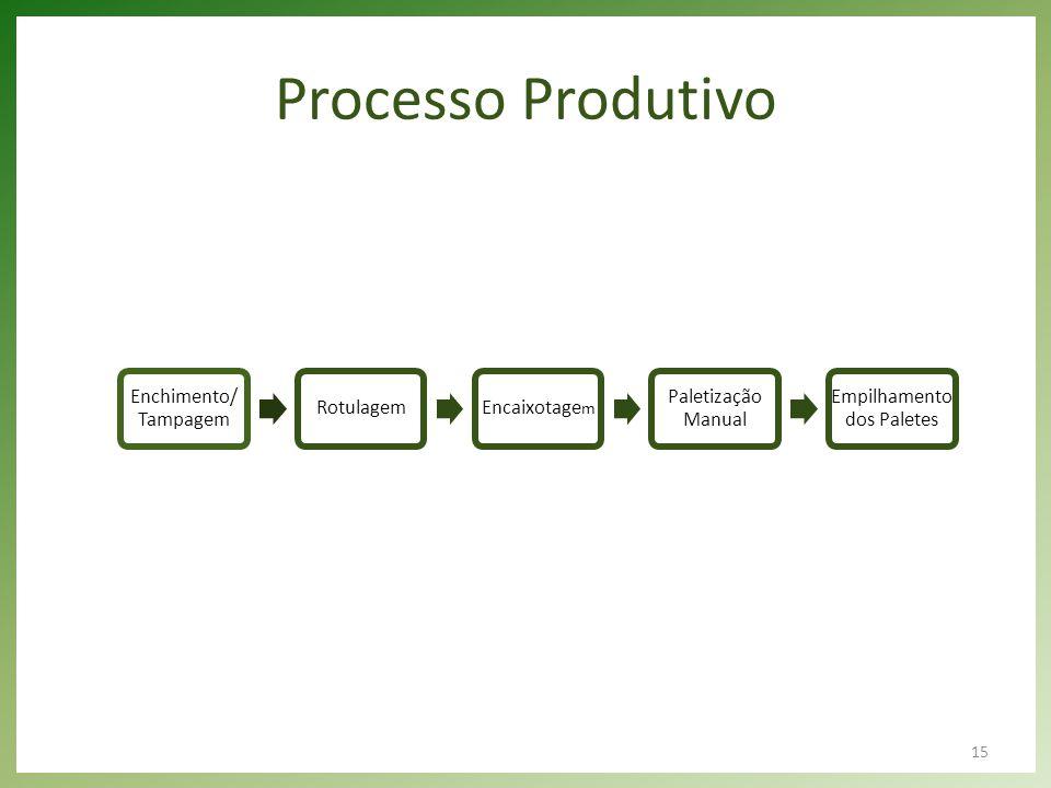 15 Processo Produtivo Enchimento/ Tampagem RotulagemEncaixotage m Paletização Manual Empilhamento dos Paletes