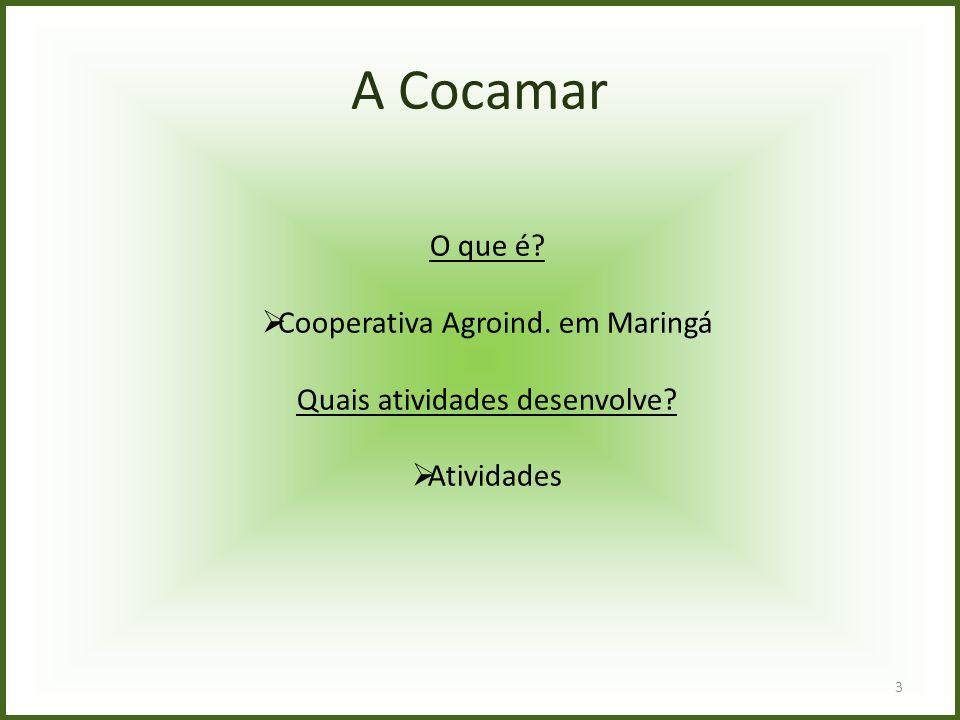 A Cocamar O que é?  Cooperativa Agroind. em Maringá Quais atividades desenvolve?  Atividades 3