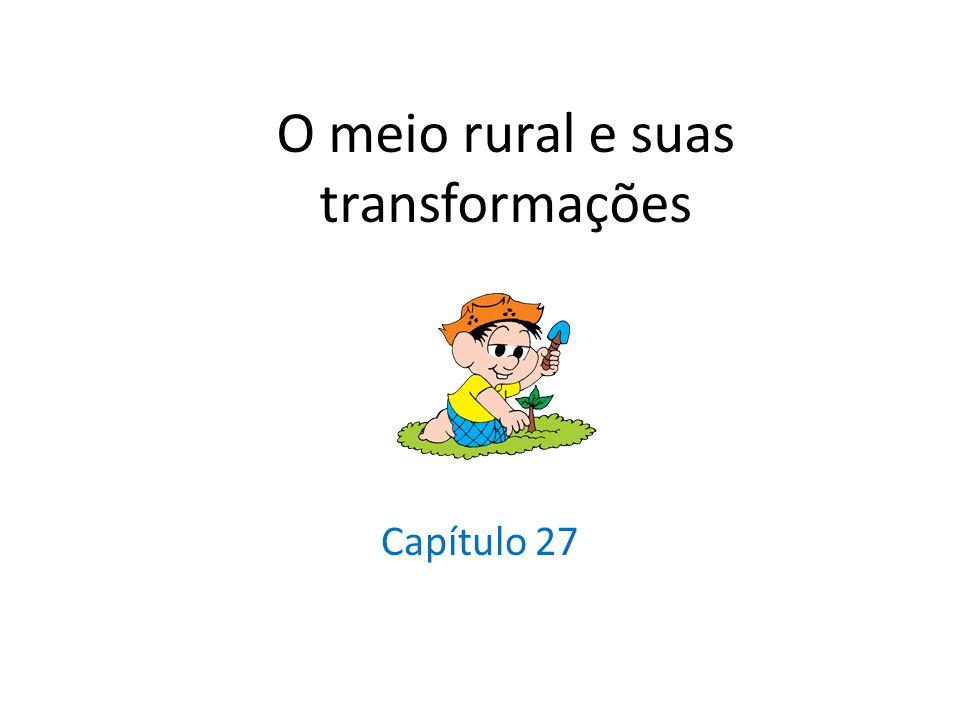O meio rural e suas transformações Capítulo 27