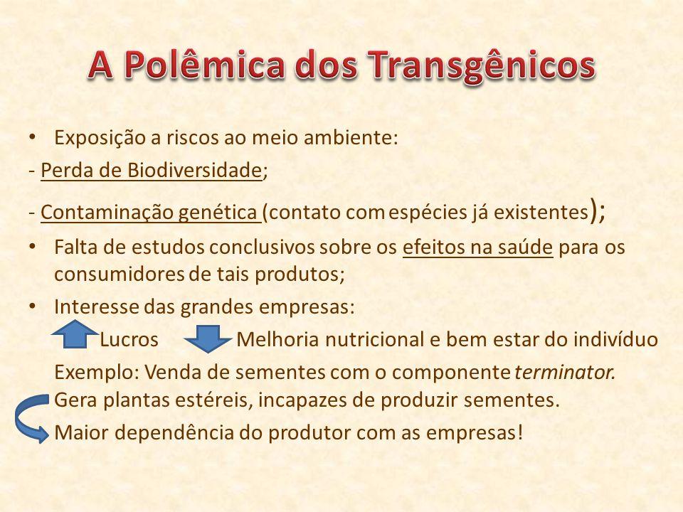 Exposição a riscos ao meio ambiente: - Perda de Biodiversidade; - Contaminação genética (contato com espécies já existentes ); Falta de estudos conclu