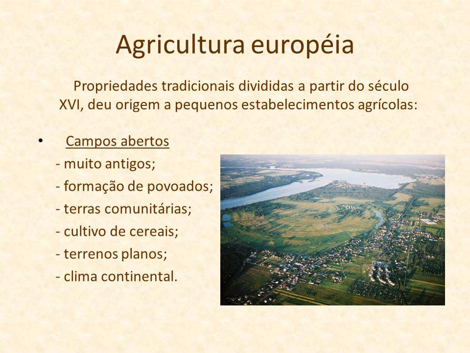 Agricultura européia Campos abertos - muito antigos; - formação de povoados; - terras comunitárias; - cultivo de cereais; - terrenos planos; - clima c