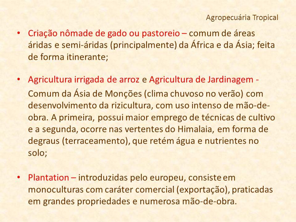 Agropecuária Tropical Criação nômade de gado ou pastoreio – comum de áreas áridas e semi-áridas (principalmente) da África e da Ásia; feita de forma i