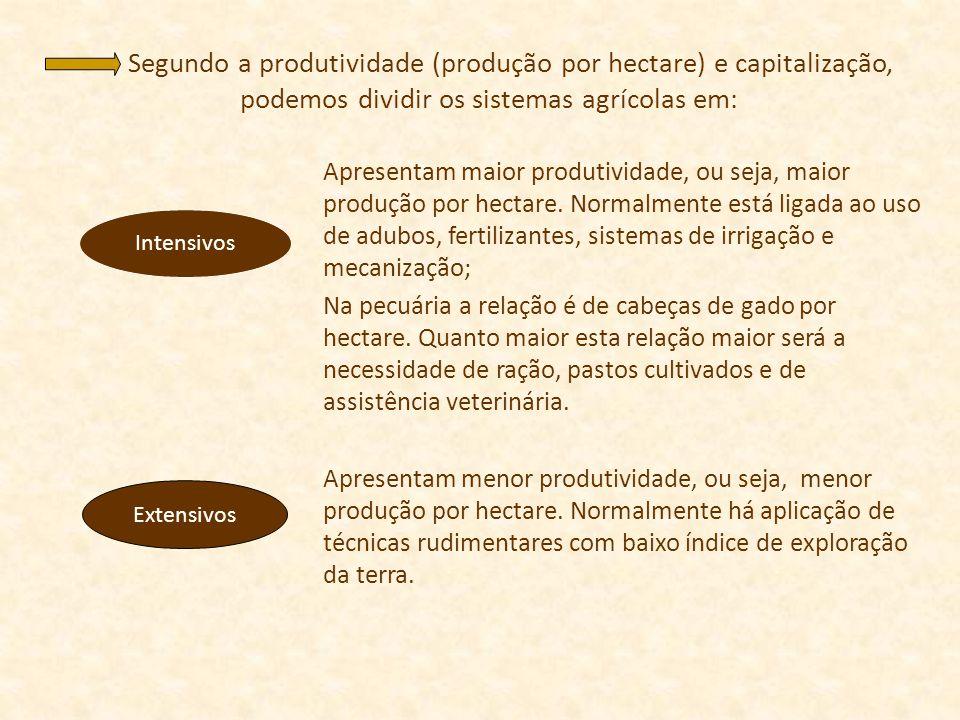 Segundo a produtividade (produção por hectare) e capitalização, podemos dividir os sistemas agrícolas em: Apresentam maior produtividade, ou seja, mai