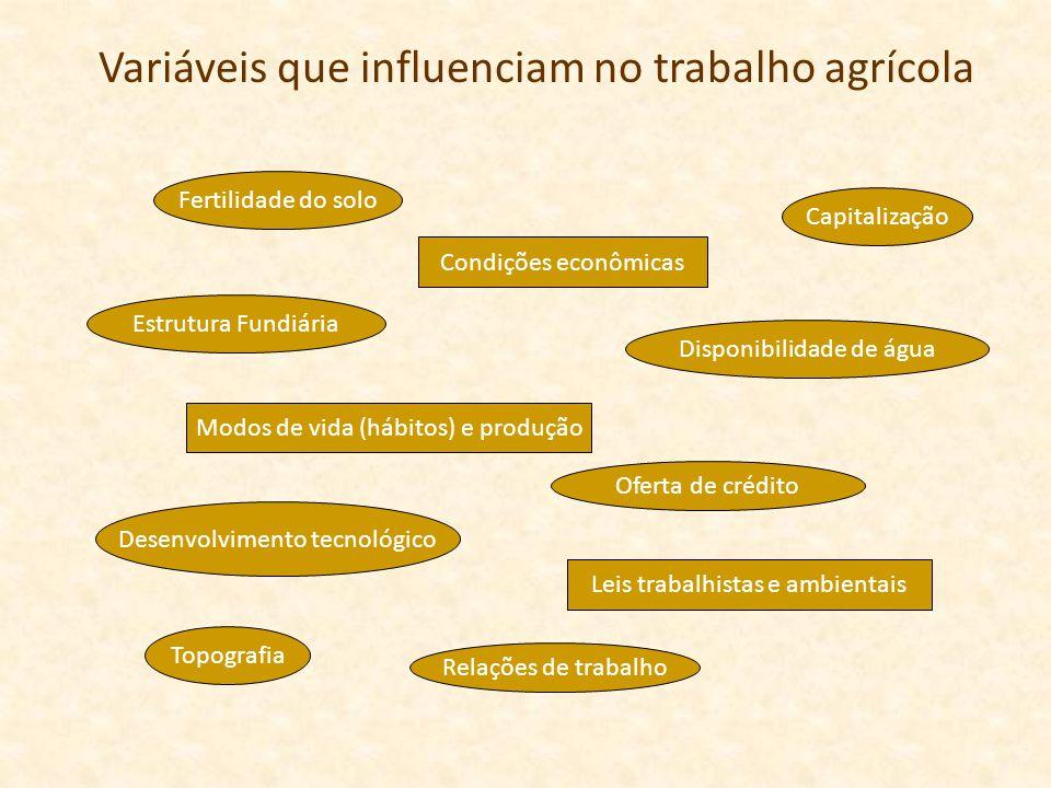 Variáveis que influenciam no trabalho agrícola Fertilidade do solo Topografia Disponibilidade de água Desenvolvimento tecnológico Capitalização Estrut