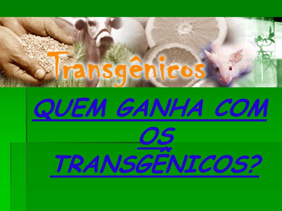 QUEM GANHA COM OS TRANSGÊNICOS