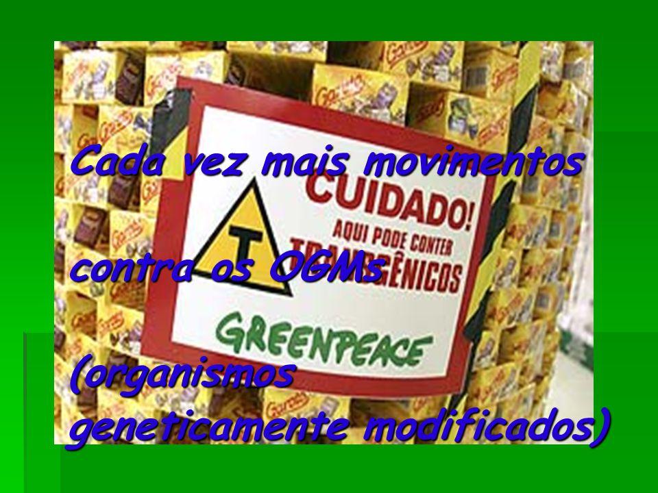Cada vez mais movimentos contra os OGMs (organismos geneticamente modificados)