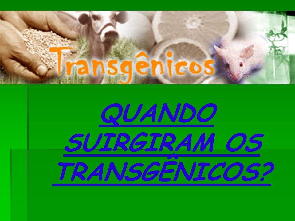 QUANDO SUIRGIRAM OS TRANSGÊNICOS