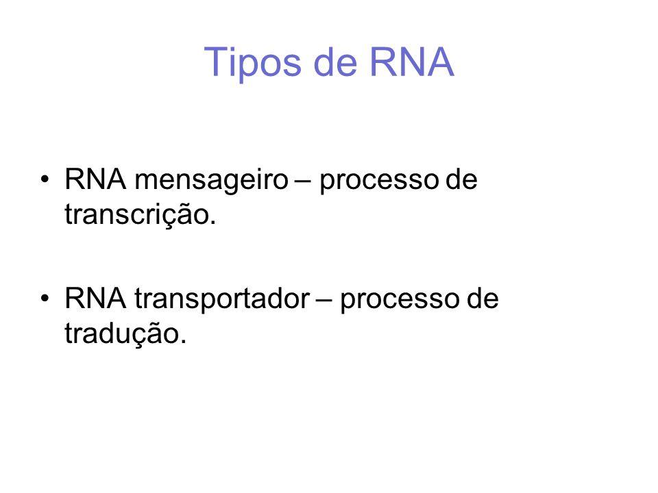 Tipos de RNA RNA mensageiro – processo de transcrição. RNA transportador – processo de tradução.