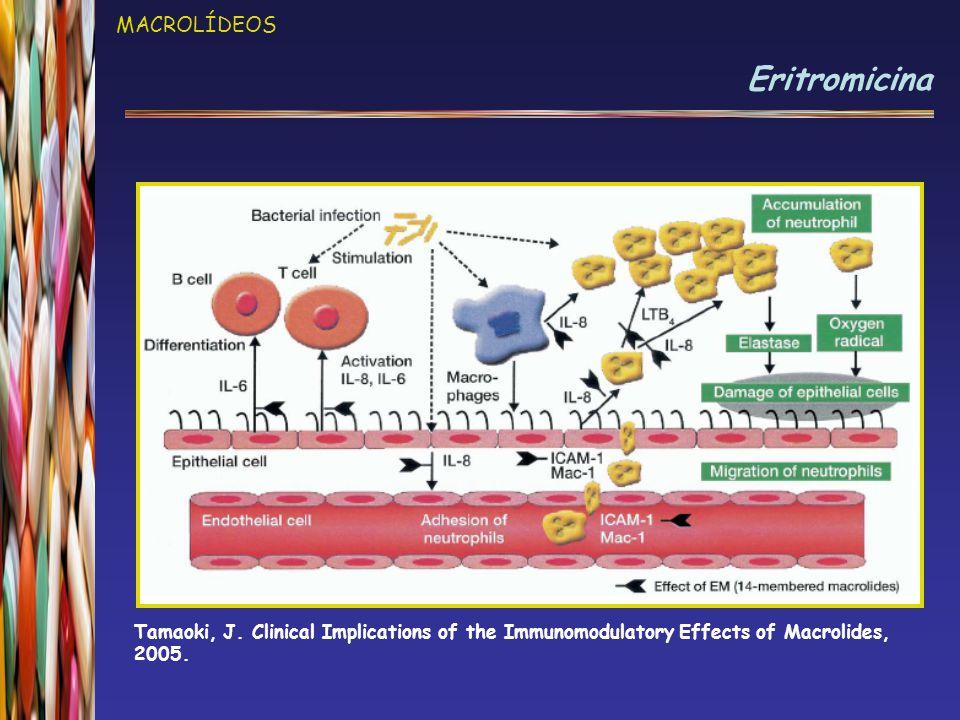 MACROLÍDEOS Eritromicina Tamaoki, J. Clinical Implications of the Immunomodulatory Effects of Macrolides, 2005.