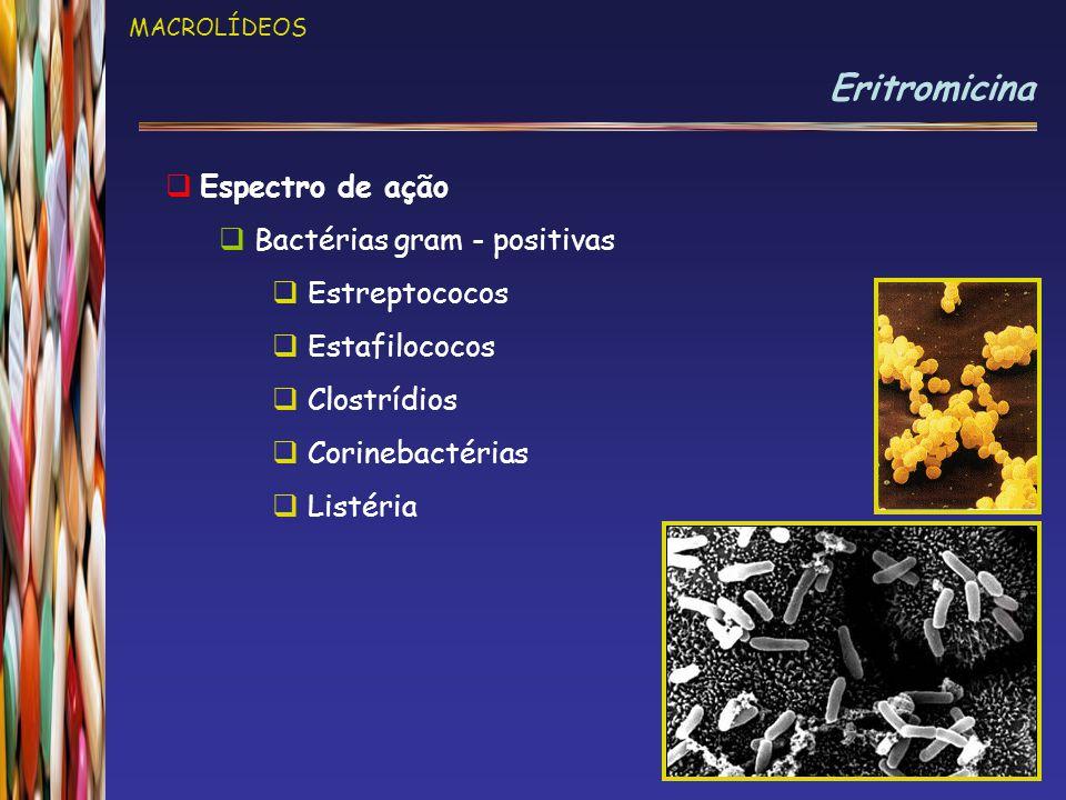 MACROLÍDEOS Eritromicina  Espectro de ação  Bactérias gram - positivas  Estreptococos  Estafilococos  Clostrídios  Corinebactérias  Listéria