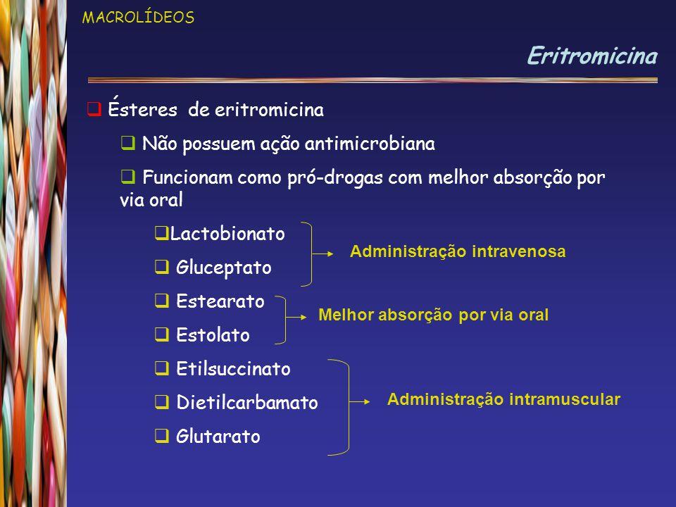 MACROLÍDEOS Eritromicina  Ésteres de eritromicina  Não possuem ação antimicrobiana  Funcionam como pró-drogas com melhor absorção por via oral  Lactobionato  Gluceptato  Estearato  Estolato  Etilsuccinato  Dietilcarbamato  Glutarato Administração intravenosa Administração intramuscular Melhor absorção por via oral