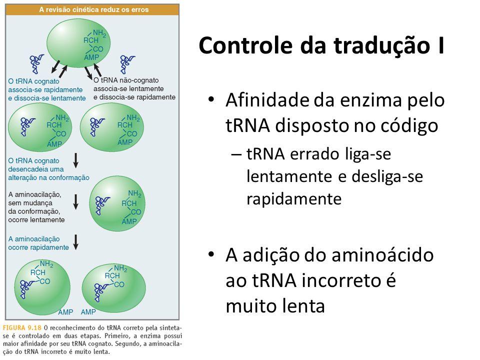 Controle da tradução I Afinidade da enzima pelo tRNA disposto no código – tRNA errado liga-se lentamente e desliga-se rapidamente A adição do aminoáci