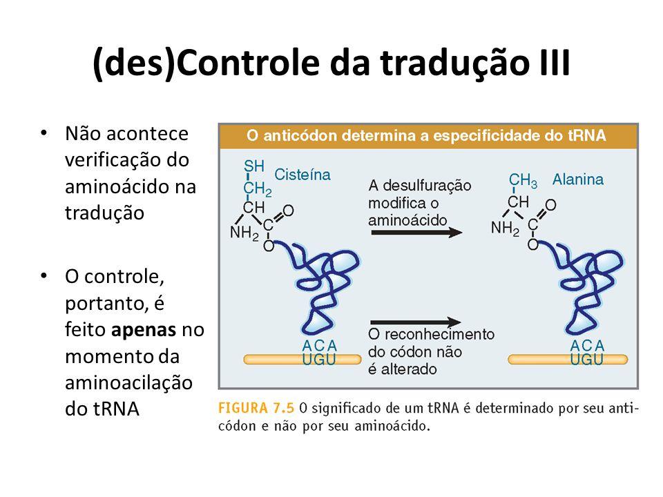 (des)Controle da tradução III Não acontece verificação do aminoácido na tradução O controle, portanto, é feito apenas no momento da aminoacilação do t