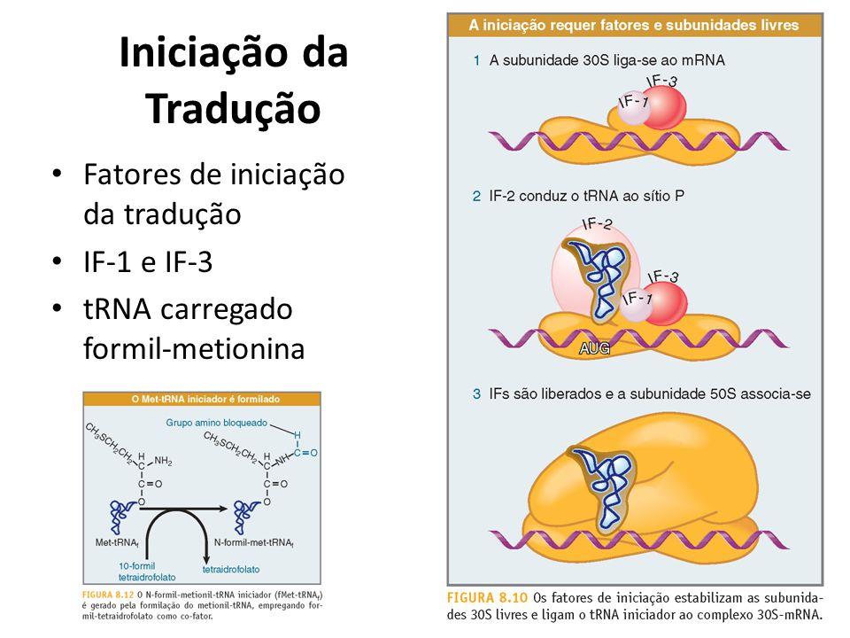 Iniciação da Tradução Fatores de iniciação da tradução IF-1 e IF-3 tRNA carregado formil-metionina