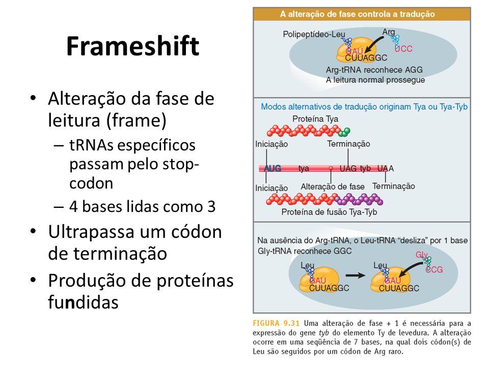 Frameshift Alteração da fase de leitura (frame) – tRNAs específicos passam pelo stop- codon – 4 bases lidas como 3 Ultrapassa um códon de terminação P