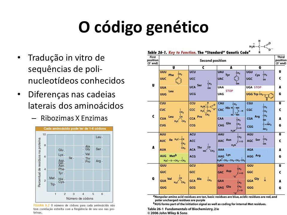 O código genético Tradução in vitro de sequências de poli- nucleotídeos conhecidos Diferenças nas cadeias laterais dos aminoácidos – Ribozimas X Enzim