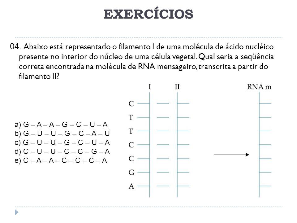EXERCÍCIOS 04.
