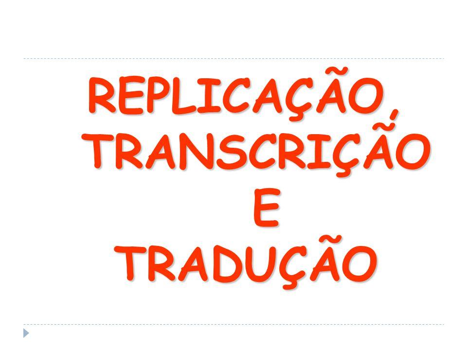 REPLICAÇÃO, TRANSCRIÇÃO TRANSCRIÇÃO ETRADUÇÃO