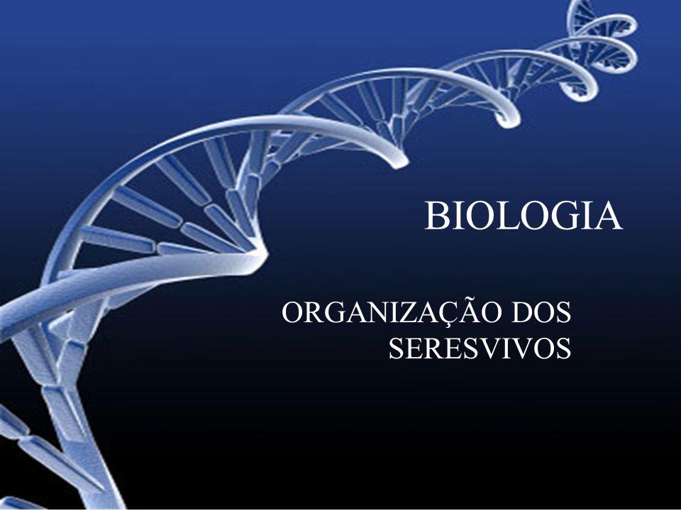 BIOLOGIA ORGANIZAÇÃO DOS SERESVIVOS