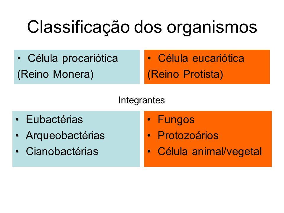 Classificação dos organismos Célula procariótica (Reino Monera) Célula eucariótica (Reino Protista) Eubactérias Arqueobactérias Cianobactérias Fungos