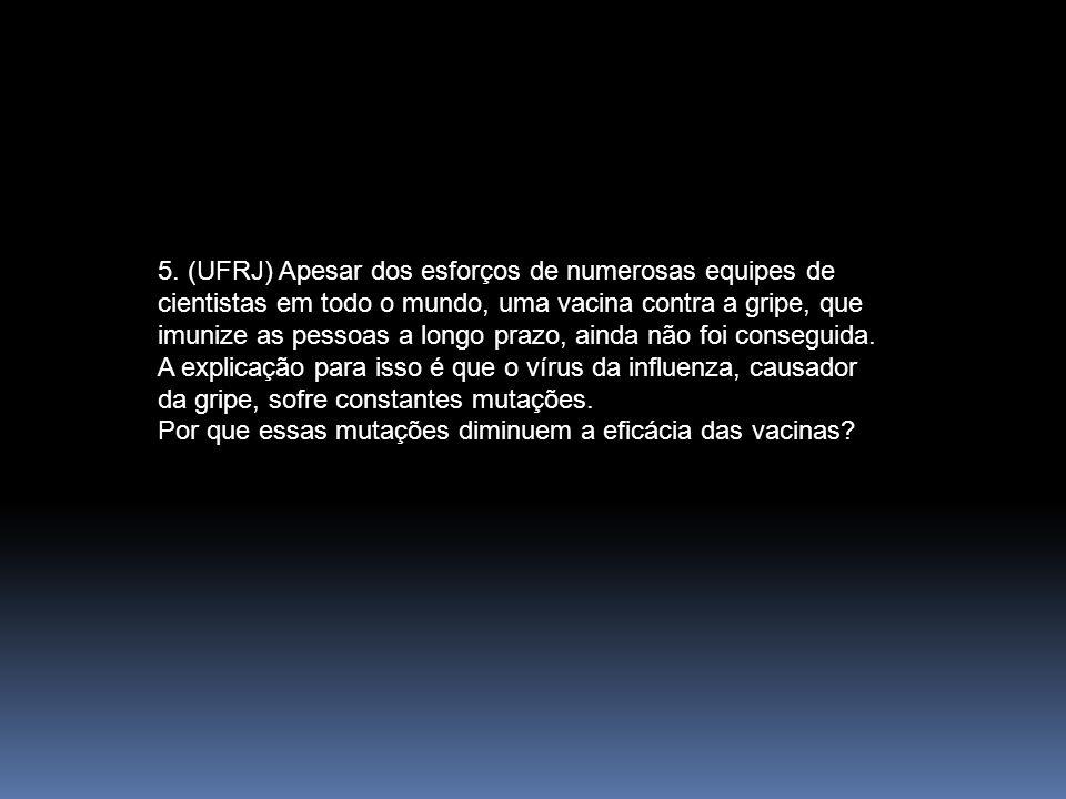 5. (UFRJ) Apesar dos esforços de numerosas equipes de cientistas em todo o mundo, uma vacina contra a gripe, que imunize as pessoas a longo prazo, ain
