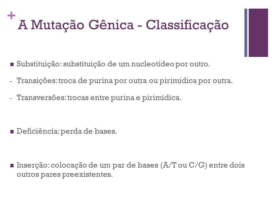 + A Mutação Gênica - Classificação Substituição: substituição de um nucleotídeo por outro. - Transições: troca de purina por outra ou pirimidica por o