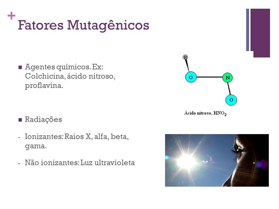 + Fatores Mutagênicos Agentes químicos. Ex: Colchicina, ácido nitroso, proflavina. Radiações - Ionizantes: Raios X, alfa, beta, gama. - Não ionizantes