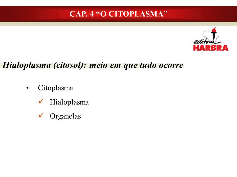 Hialoplasma (citosol): meio em que tudo ocorre Citoplasma Hialoplasma Organelas CAP.
