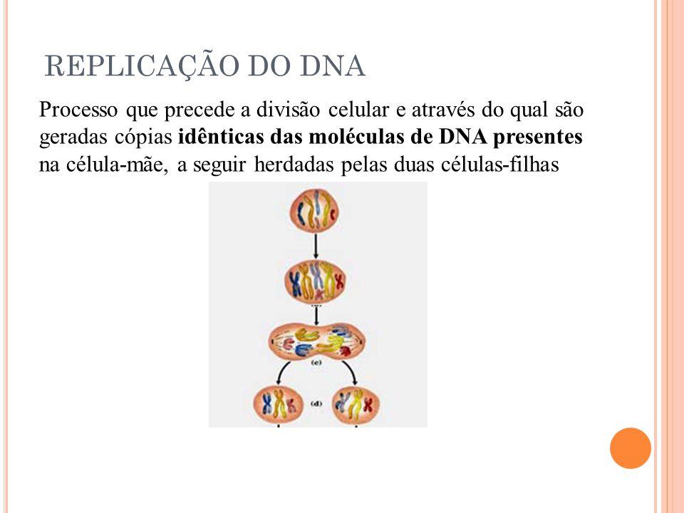 REPLICAÇÃO DO DNA Processo que precede a divisão celular e através do qual são geradas cópias idênticas das moléculas de DNA presentes na célula-mãe, a seguir herdadas pelas duas células-filhas
