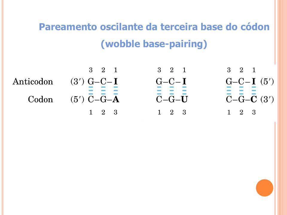 Pareamento oscilante da terceira base do códon (wobble base-pairing)