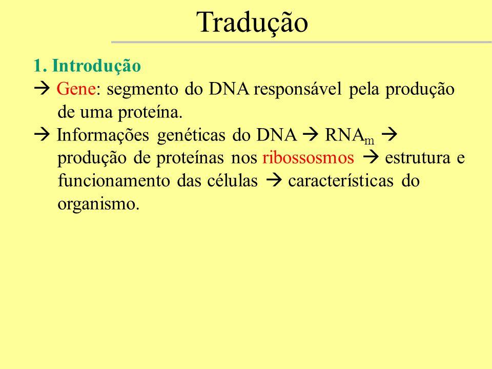 1. Introdução  Gene: segmento do DNA responsável pela produção de uma proteína.  Informações genéticas do DNA  RNA m  produção de proteínas nos ri