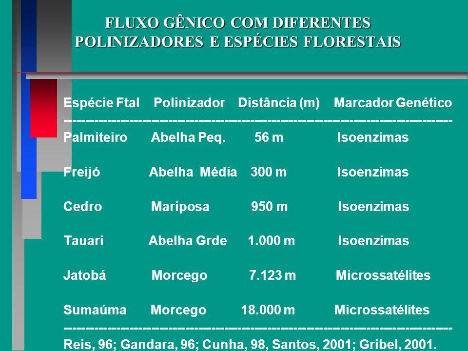 FLUXO GÊNICO COM DIFERENTES POLINIZADORES E ESPÉCIES FLORESTAIS Espécie Ftal Polinizador Distância (m) Marcador Genético -----------------------------