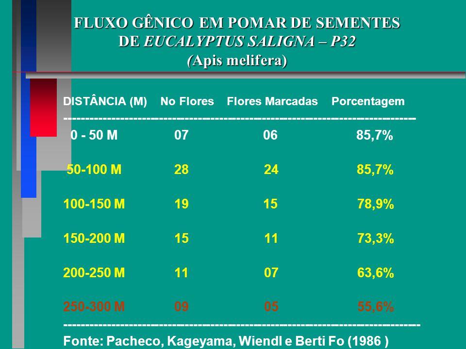 FLUXO GÊNICO EM POMAR DE SEMENTES DE EUCALYPTUS SALIGNA – P32 (Apis melifera) DISTÂNCIA (M) No Flores Flores Marcadas Porcentagem ---------------------------------------------------------------------------------- 0 - 50 M 07 06 85,7% 50-100 M 28 24 85,7% 100-150 M 19 15 78,9% 150-200 M 15 11 73,3% 200-250 M 11 07 63,6% 250-300 M 09 05 55,6% ----------------------------------------------------------------------------------- Fonte: Pacheco, Kageyama, Wiendl e Berti Fo (1986 )