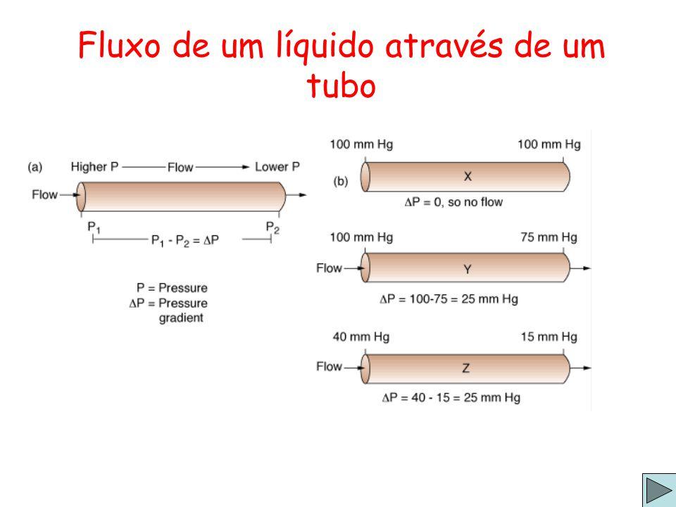 Fluxo de um líquido através de um tubo