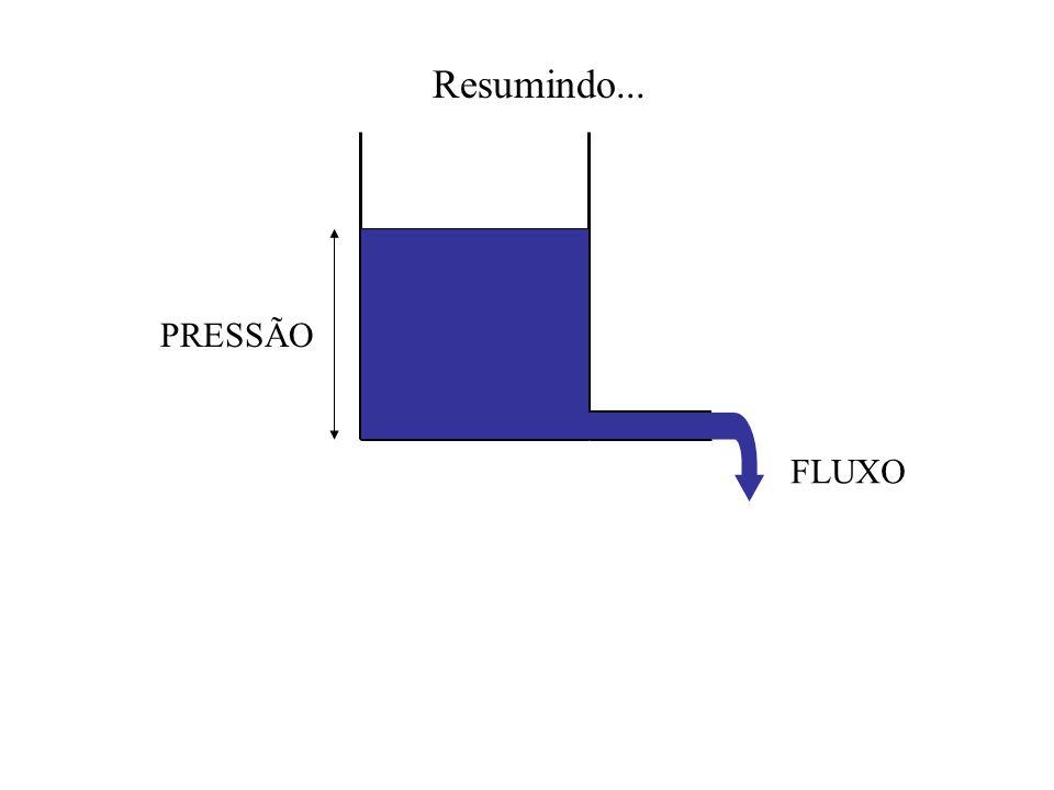 FLUXO PRESSÃO Resumindo...
