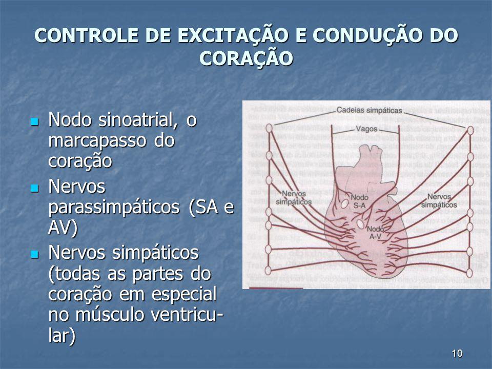 10 CONTROLE DE EXCITAÇÃO E CONDUÇÃO DO CORAÇÃO Nodo sinoatrial, o marcapasso do coração Nodo sinoatrial, o marcapasso do coração Nervos parassimpático