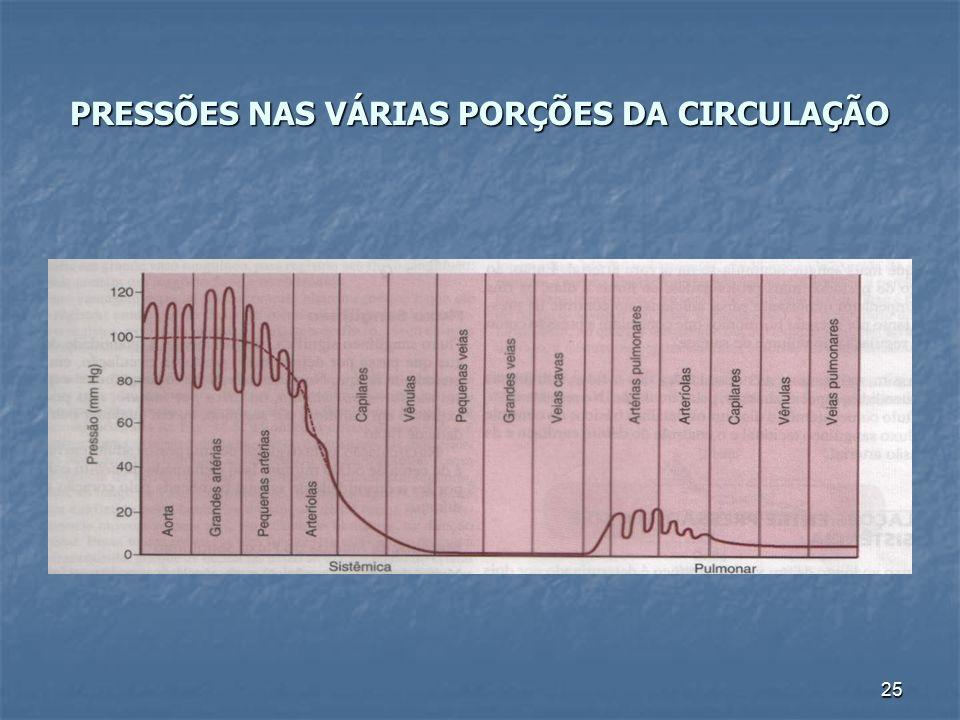 25 PRESSÕES NAS VÁRIAS PORÇÕES DA CIRCULAÇÃO