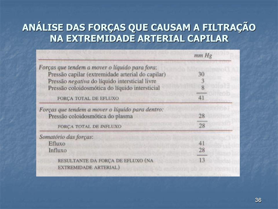36 ANÁLISE DAS FORÇAS QUE CAUSAM A FILTRAÇÃO NA EXTREMIDADE ARTERIAL CAPILAR