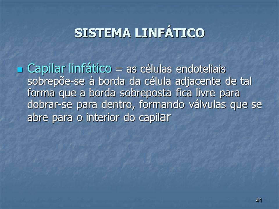 41 Capilar linfático = as células endoteliais sobrepõe-se à borda da célula adjacente de tal forma que a borda sobreposta fica livre para dobrar-se pa