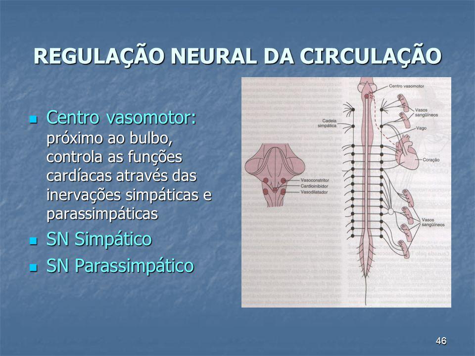 46 REGULAÇÃO NEURAL DA CIRCULAÇÃO Centro vasomotor: próximo ao bulbo, controla as funções cardíacas através das inervações simpáticas e parassimpática